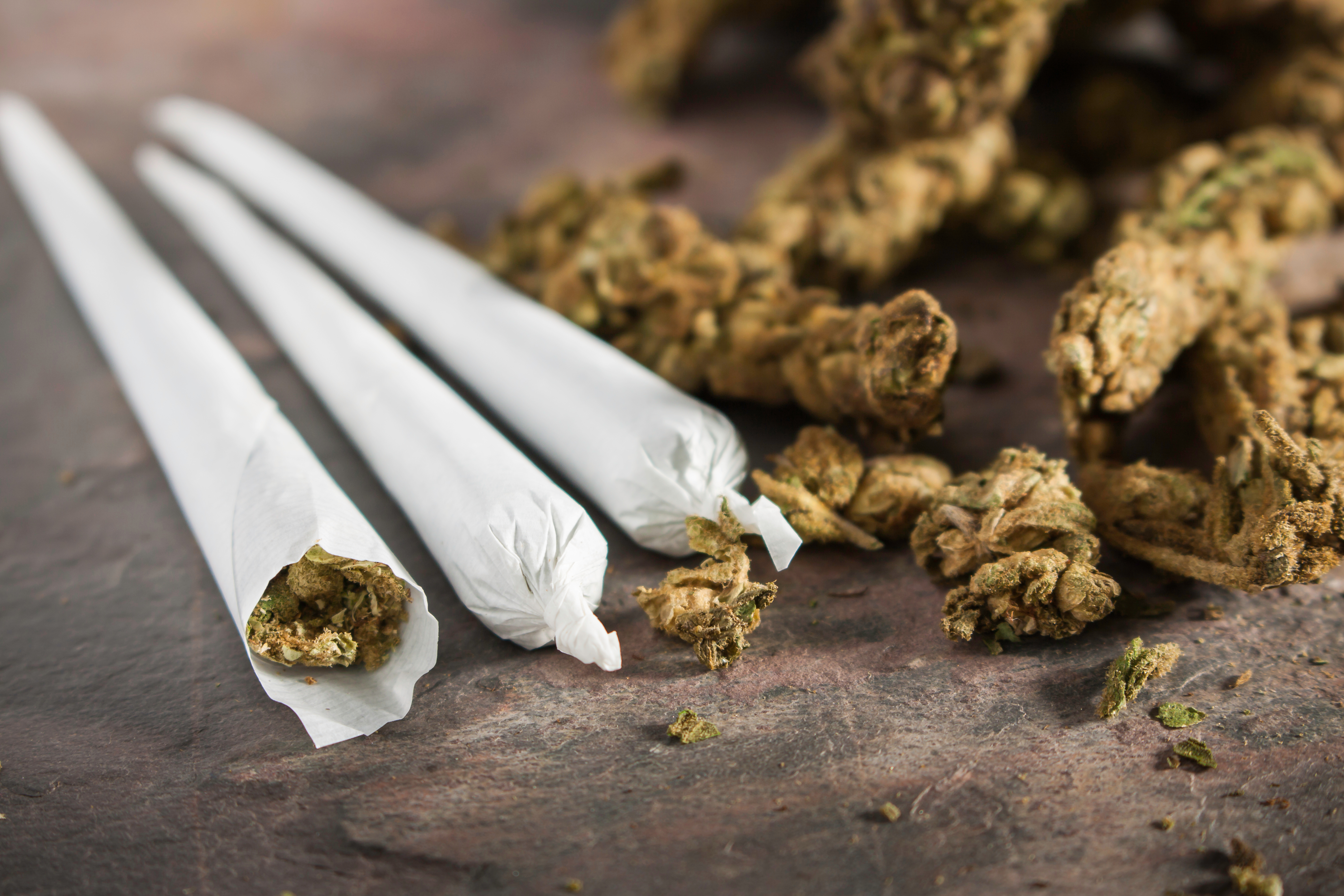 The Heart Of Matter Adolescent Brain >> Smoking Pot Just Once May Increase Teen Brain Volume Why