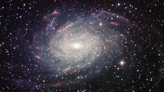 A Milky Way look-alike, NGC 6744