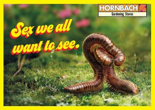 Hornbach insect porn ad