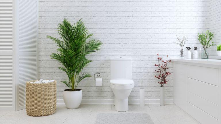 a white minimalistic bathroom