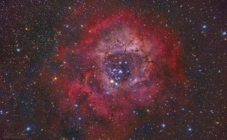 Rosette Nebula by Miguel Claro