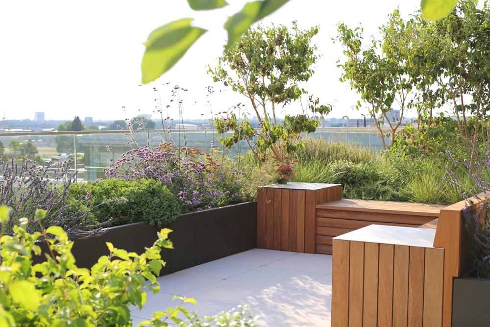 Case Study: A Modern, Meadow-Inspired City Roof Garden