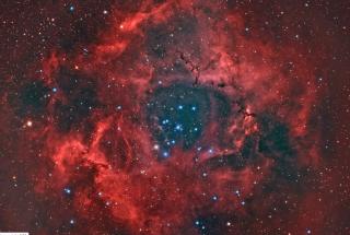 Rosette Nebula by Reinhold Wittich