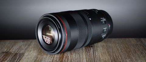 Canon RF 100mm f/2.8L Macro IS USM review