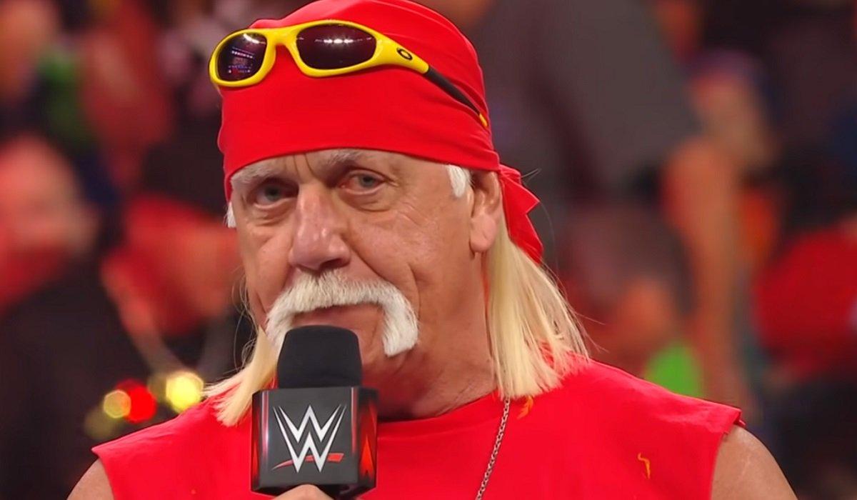 Hulk Hogan Raw WWE