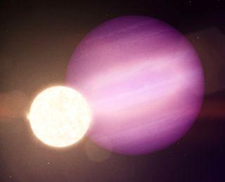 Sanatçının, Jüpiter boyutunda potansiyel bir gezegen olan WD 1856 b'nin, çok daha küçük ana yıldızının, soluk beyaz bir cüce yörüngesindeki çizimi.