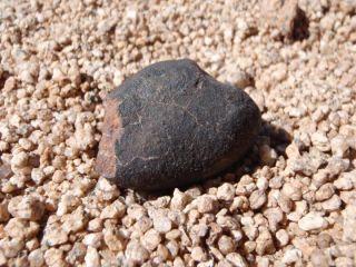 Atacama meteorite