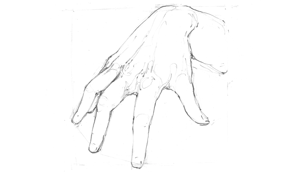 Redrawn sketch of the hand