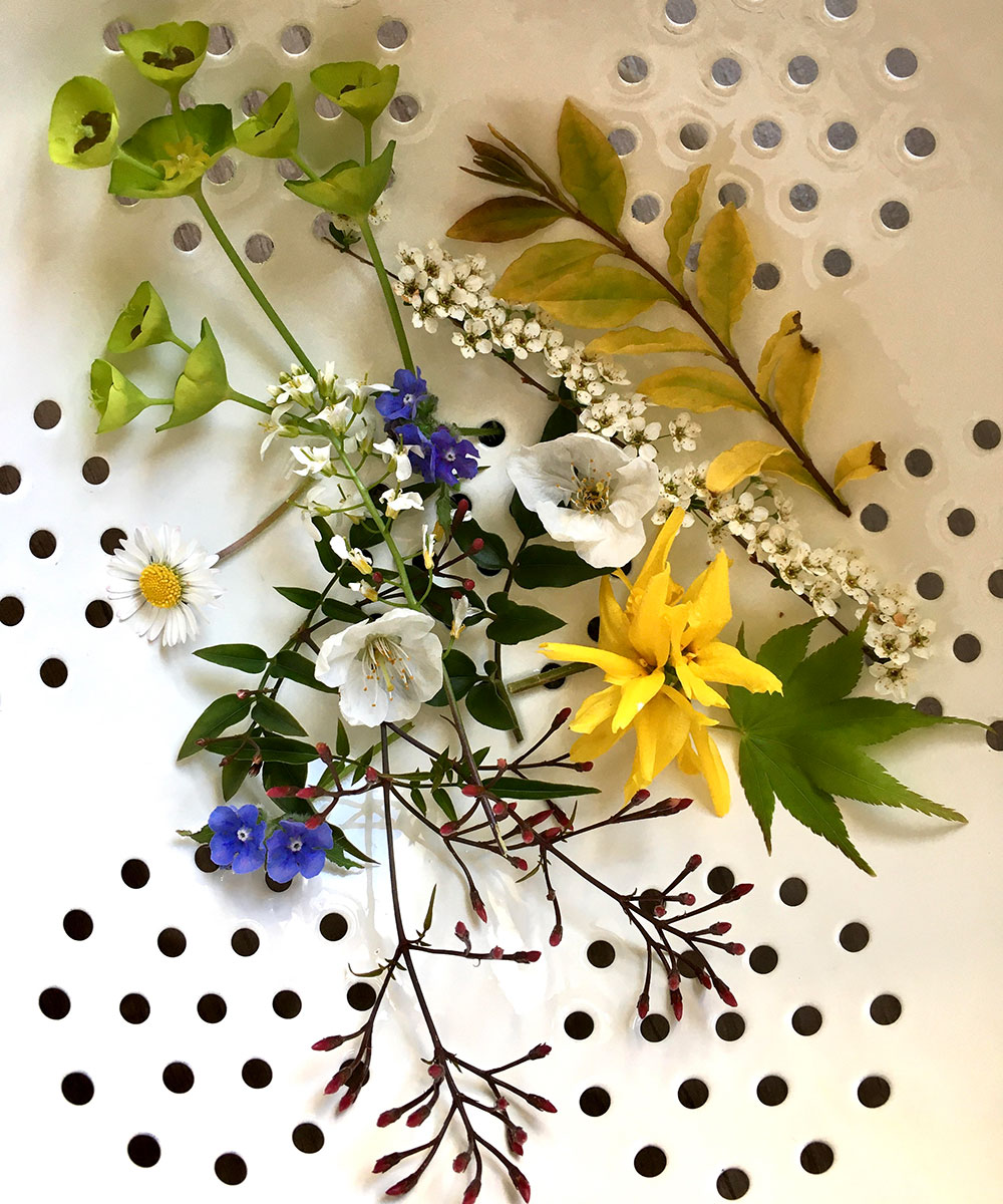 Kit Kemp's ideas for creativity at home – from flower pressing to collage | Homes & Gardens