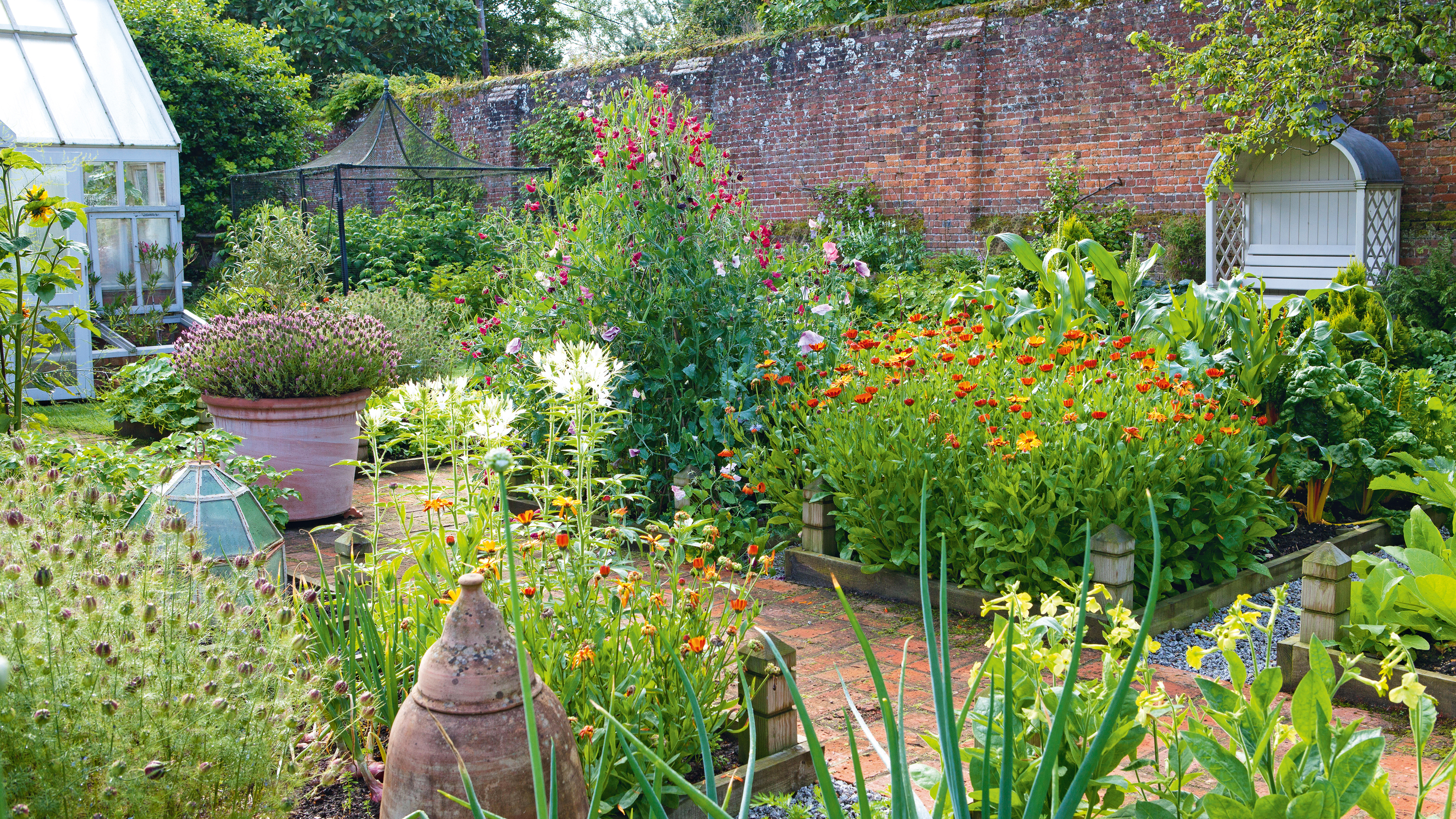 How To Plan A Kitchen Garden Expert Advice And Inspiring Ideas Real Homes