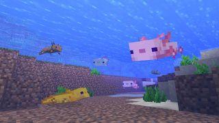 Minecraft 1.17 axolotl