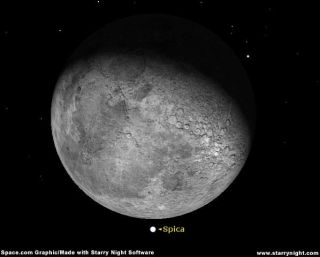 Moon Mugging: Bright Star Blocked by Lunar Lout