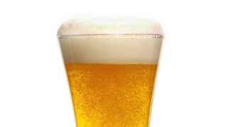 A close-up of a glass of beer shows rising bubbles and a foamy head.