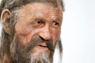 Otzi the iceman mummy