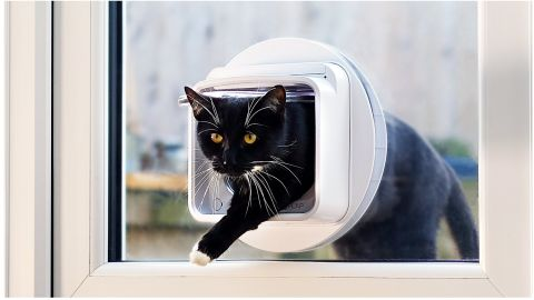SureFlap Microchip Cat Flap Connect review