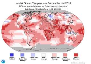 A global temperature map shows that nearly the entire planet was warmer than average this July.