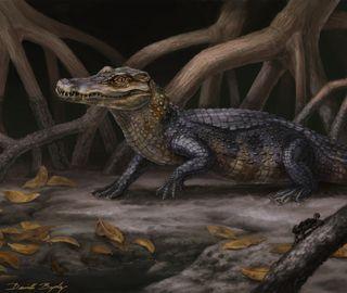 Artist's interpretation of alligator species