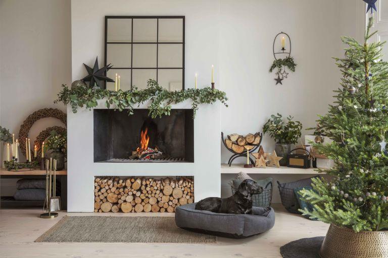 Christmas living room with dog