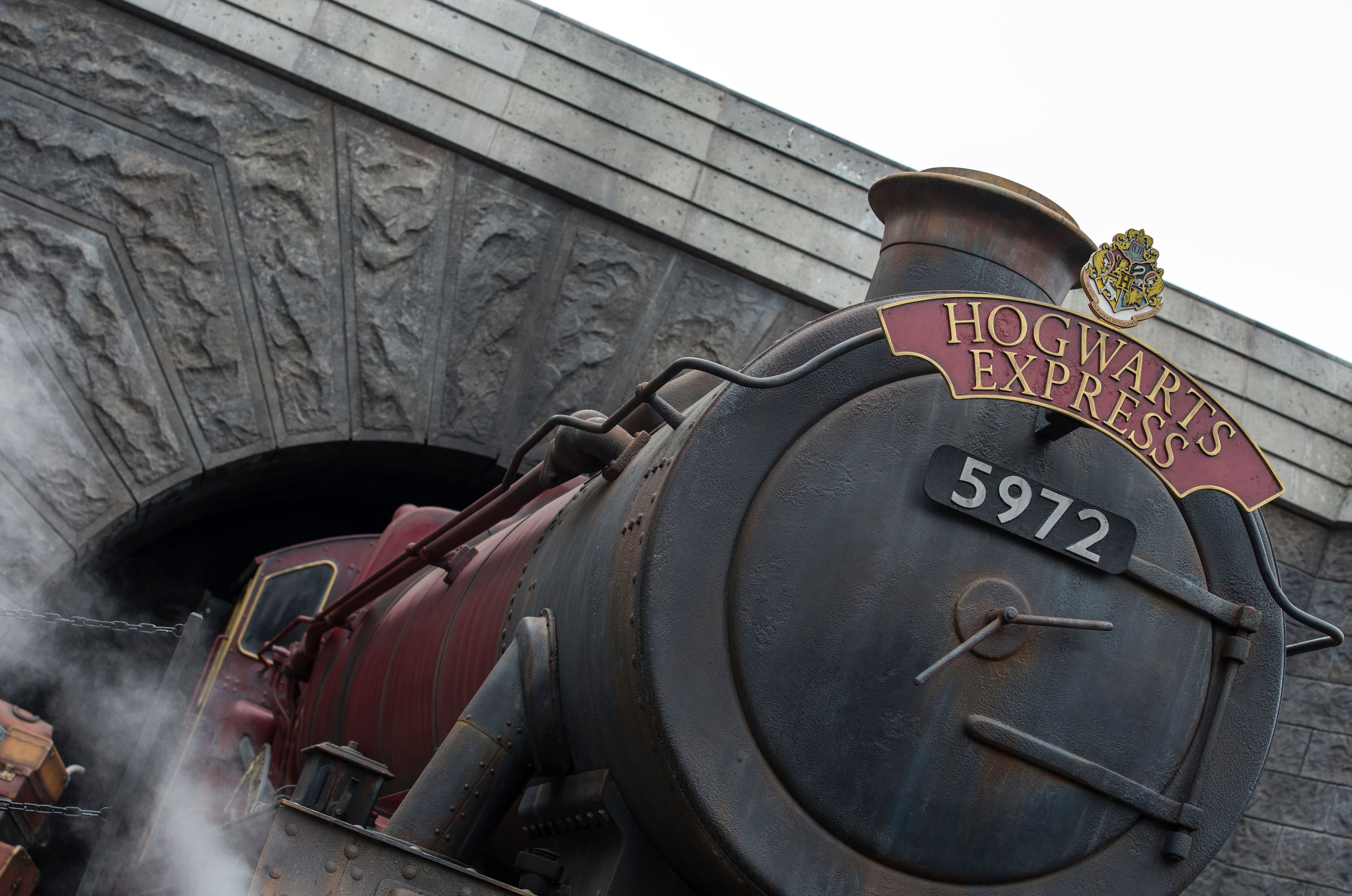 Harry Potter star goes to The Wizarding World of Harry Potter... and no one recognises them!