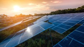 Image of a field of solar panels at sunset