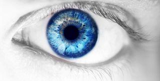 Human eye, close-up
