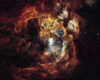 Fiery Lobster Nebula © Suavi Lipinski