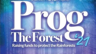 Prog The Forest