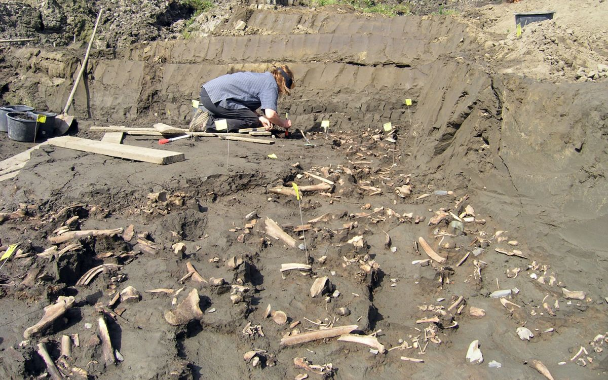 Unknown Group of Ancient Humans Once Lived in Siberia, New Evidence Reveals
