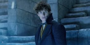 The Biggest Issues Some Harry Potter Fans Have With The Fantastic Beasts Movies