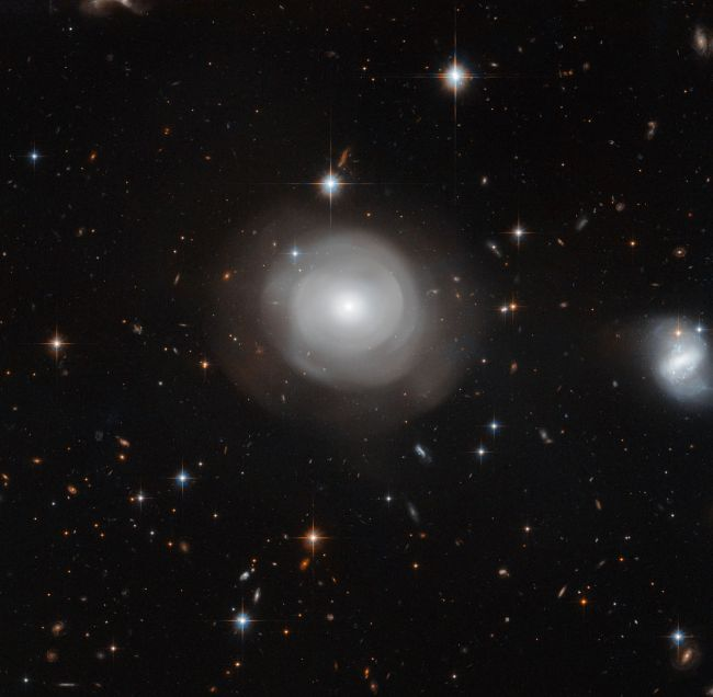The ghostly shells of galaxy ESO 381-12 are captured here in a new image from the NASA/ESA Hubble Space Telescope, set against a backdrop of distant galaxies.