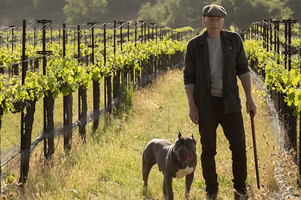 Star Trek: Picard: Release Date, Trailers and Cast