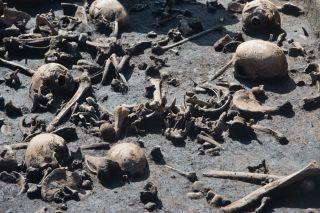bronze age battlefield