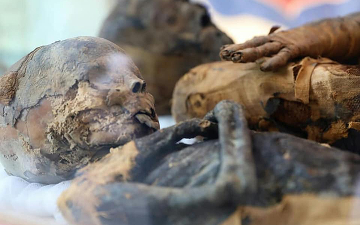 Two human mummies were recovered from clay jars in the tomb.