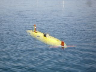 whoi submersible remus