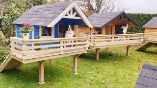 luxury diy dog cabins