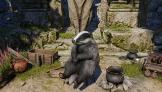Baldur's Gate 3 badger
