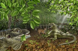 Barbaturex morrisoni, the bearded king lizard of the Eocene.