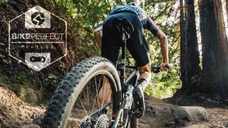 mountain bike fitness