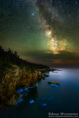 Milky Way and Bioluminescence in Maine