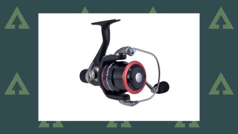 Shakespeare Agility 2 Match Reels