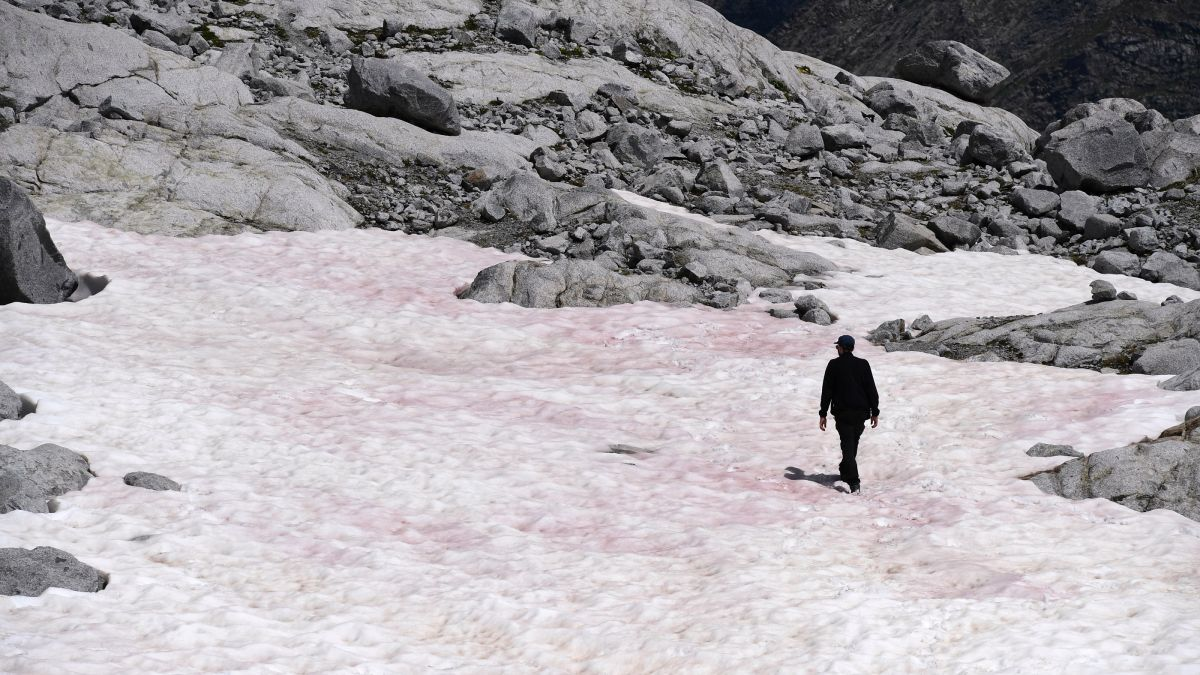 Pink 'watermelon snow' threatens major Italian glacier - Livescience.com
