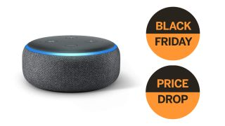 Save over 50% on Amazon Echo Dot in amazing Amazon Black Friday deal!