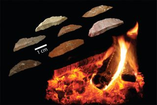 early human tools discovery in South Africa.