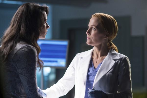 Scientist Dana Scully in the X-Files