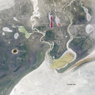 Etosha Pan, a dry lakebed in the middle of Namibia's Etosha National Park, was photographed by astronauts aboard the International Space Station.