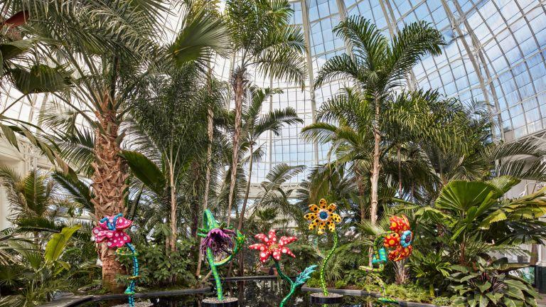 US Botanic Gardens, New York Botanical Garden exhibition with Yayoi Kusama