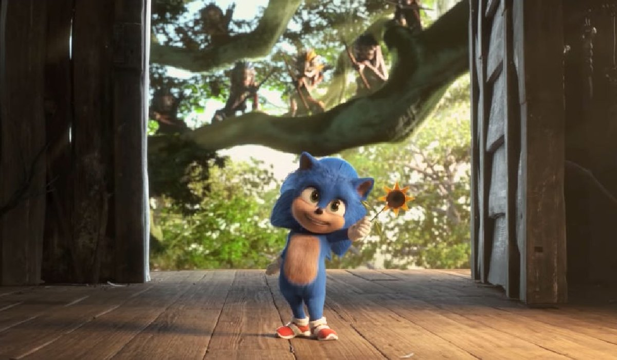 Sonic The Hedgehog Baby Sonic offers a flower, with Echidnas waiting in the background