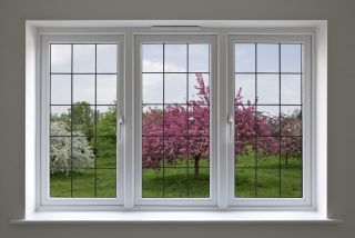 double glazed window looking out onto orchard