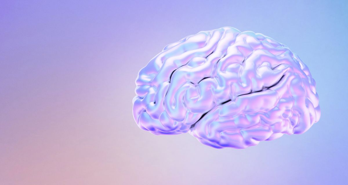 Menopause and the brain: turns out, it's not so bad