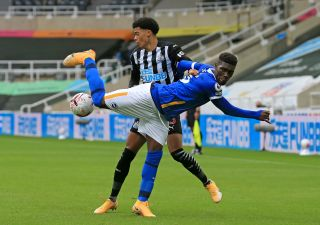 Newcastle United v Brighton and Hove Albion – Premier League – St James' Park
